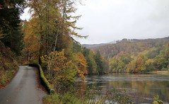 Loch Fascally Pitlochry Perthshire (Gordon Haws) Tags: trees perthshire autumncolours pitlochry lochfascally