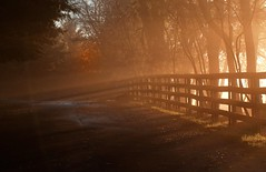 A new day (Dennis Cluth) Tags: county sun art sunrise fence oakland michigan addison beams townshiop