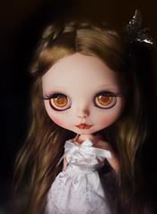 #12 custom commission