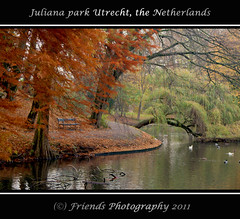 autumn in Juliana park (drbob97) Tags: park autumn orange holland tree green fall water dutch pine canon walking duck leaf utrecht bright herfst nederland vivid willow hanging juliana leafs pound vijver drbob 24105 kleuren utreg doubleniceshot tripleniceshot mygearandme mygearandmepremium mygearandmebronze mygearandmesilver mygearandmegold mygearandmeplatinum mygearandmediamond drbob97 aboveandbeyondlevel4 aboveandbeyondlevel1 flickrstruereflection1 flickrstruereflection2 flickrstruereflection3 flickrstruereflection4 flickrstruereflection5 flickrstruereflection6 friendsphotograpy aboveandbeyondlevel2 aboveandbeyondlevel3