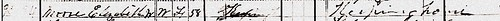 Elizabeth Pitt 1880 US Census