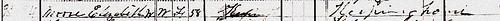 Elizabeth Pitt 1880 US Census