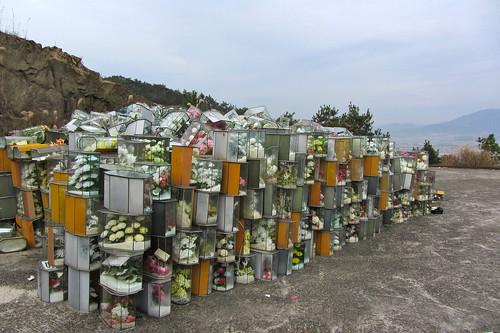 graveyard13