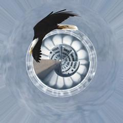 Planet American Eagle (Flipped Out) Tags: iowa americanbaldeagle leclaire polarpanorama