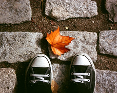 Comienzo del otoo... (aNi, aNi, aNi...) Tags: madrid naturaleza fall hoja shoes converse otoo kdd naranja piedra elcapricho parqueelcapricho flickrsdemadrid comienzosdelotoo