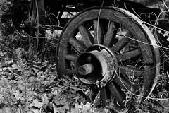 Rusty (BlitzkriegTord) Tags: rusty carro viejo abandonado carruaje