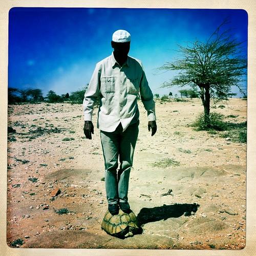 Turtle game thru Iphone Hipstamatic - Somaliland