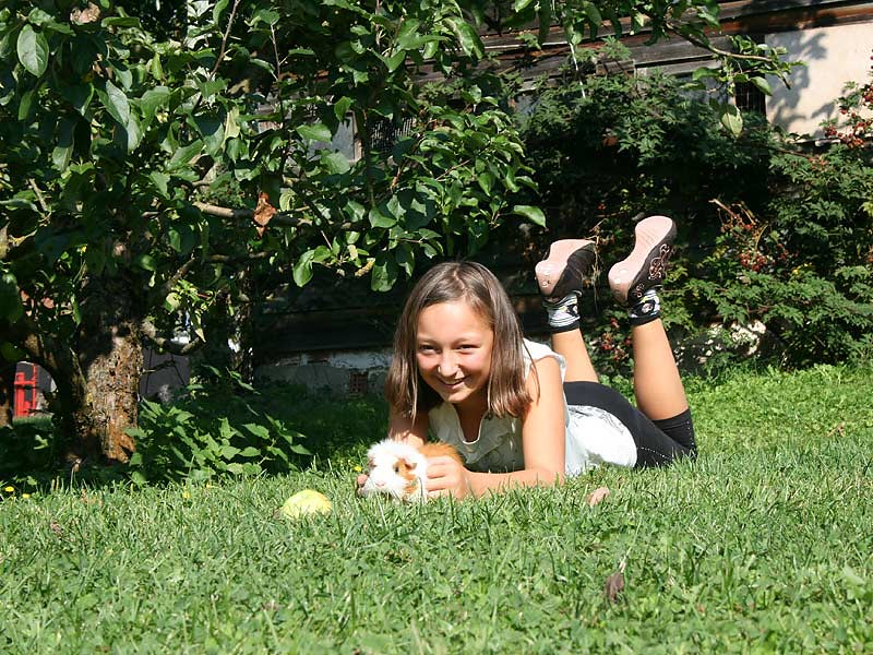 Kirschblütenhof - Mädchen mit Meerschweinchen