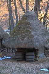 Barrels (AdjaFong) Tags: barn thatchedroof sibiu scheune reetdach rumnien siebenbrgen