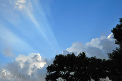 Uma sexta de cu azul pra voc... (GFerreiraJr ) Tags: brazil sky brasil nikon cu sp nationalgeographic d90 santoandr micmarayyo nikond90 flickraward santoandrsp nikonflickraward panoramafotogrfico touraroundtheworld flickrunitedaward brasilemimagens gferreirajr