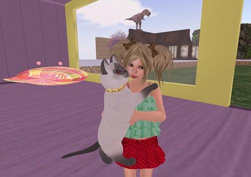 cat housekeeper_002