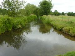 River Pang