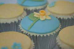 Marie Curie Daffodil Cupcake (thecustomcakeshop) Tags: birthday blue flower cup yellow cake marie cupcakes cupcake daffodil curie mariecurie