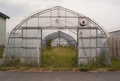 Covered Frames (Yuglo.) Tags: japan greenhouse frame aizu