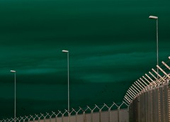 Flugraum (Postsumptio) Tags: sky bird animal clouds fence flying airport streetlight explore activity barbwire airfield three3 twocolors greenmetal