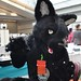 anthrocon_117