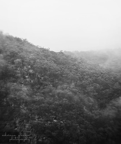 mist & fog in springtime_4