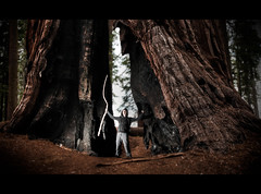 Lost in the Giant Forest (RiOTPHOTOGRAPHY.com) Tags: california ca wood usa man black forest ph