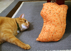 IC42-Kitty Pillow 1