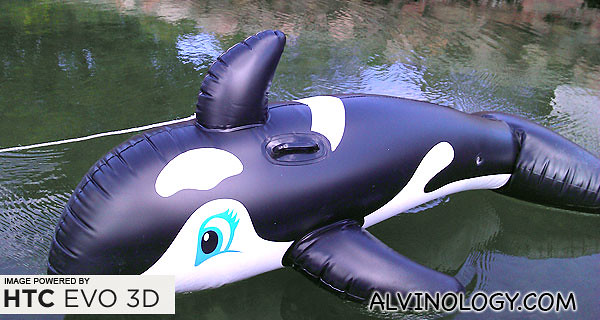 Whale spotted... an inflatable one