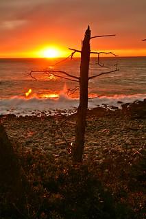 ~Sunrise~