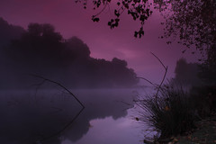 spooky morning on the lake (Si Photography) Tags: blue autumn trees sky sun mist lake reflection simon nature water field grass metal misty fog clouds sunrise canon landscape photography interesting poetry track colours slow gorgeous branches meadow greens dorset shutter 5d rise wiltshire scape bishop depth fonthill gifford detectives hindon 600d 550d maidment flickrduel kindestsi sphm17aolcom