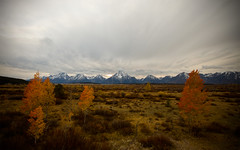 Autumn Tetons (shanecotee) Tags: autumn sunset sky mountains fall landscape yellowstone wyoming tetons jacksonhole