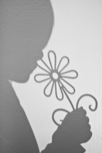 Week 43/52 {Shadows}