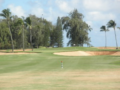 Turtle Bay Colf Course 120