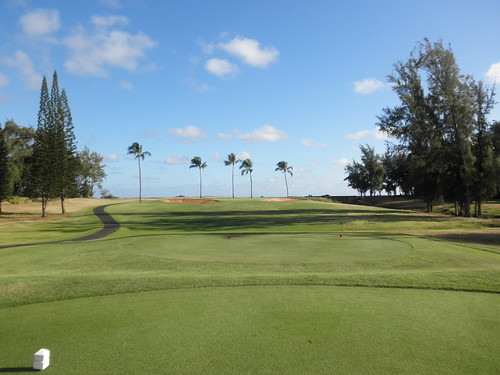 Turtle Bay Colf Course 069