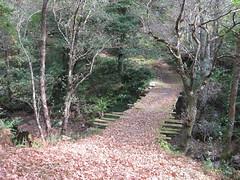 Ruta da Marronda