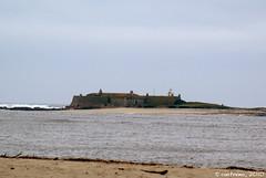 Forte da Ínsua (Caminha, Portugal)
