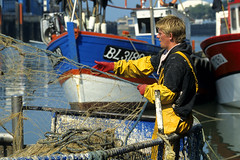 Retour de pêche à Boulogne-sur-Mer (Ytierny) Tags: france bateau filet merdunord pêche pasdecalais boulognesurmer côtedopale ytierny