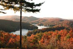 IMG_8852 (lakemontlady) Tags: county fall rabun