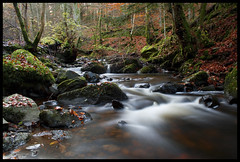 Autumn forest (Christian Hacker) Tags: longexposure autumn trees red water colors leaves forest walking landscape scotland moss stream hiking perthshire dunkeld birnam perthandkinross neutraldensityfilter canoneos400d birnamhill