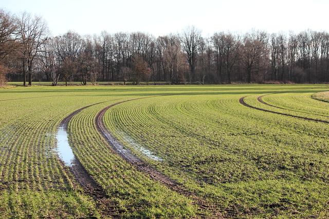 Acker in der Region Hannover
