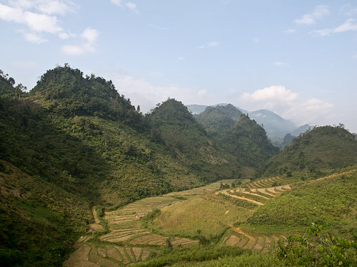 Steep mountains + rice fields