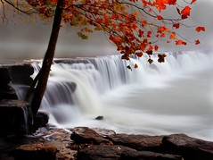 foggy falls (Dave's Photo Odyssey) Tags: autumn tree fall water leaves fog canon waterfall arkansas canondslr northwestarkansas canon60d naturaldamarkansas