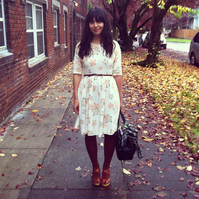 fall dress, the friendly fox