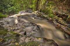 Eshowe Fall B (Gavin Fordham) Tags: longexposure blur river landscape southafrica waterfall nikon d2x lush hdr photomatix 9xp eshowe gavinfordham