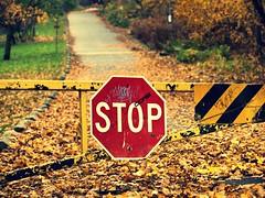 Photographer's Block (MSVG) Tags: park toronto ontario canada home sign smith stop