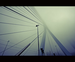 A swan in the fog (zilverbat.) Tags: bridge urban mist abstract holland art dutch l
