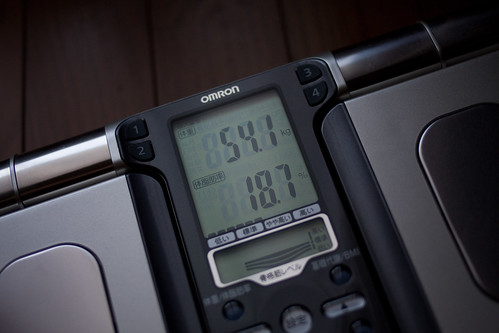 54.1kg
