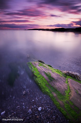 Rush (moe chen) Tags: ocean sea seascape seaweed green beach rock clouds point landscape long exposure elizabeth cove maine sigma crescent kettle pebble rush moe cape algae 1020mm chen bw110 d7000