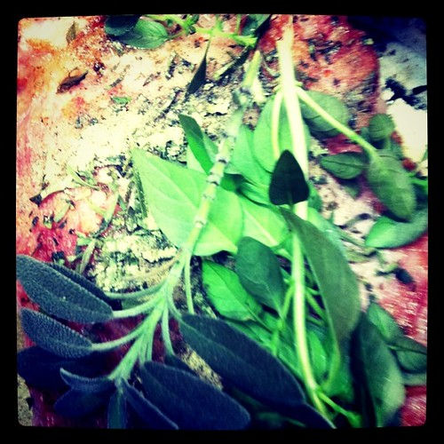 Ervas frescas, perfumando a costelinha suína, carne, instagram, pobregram,