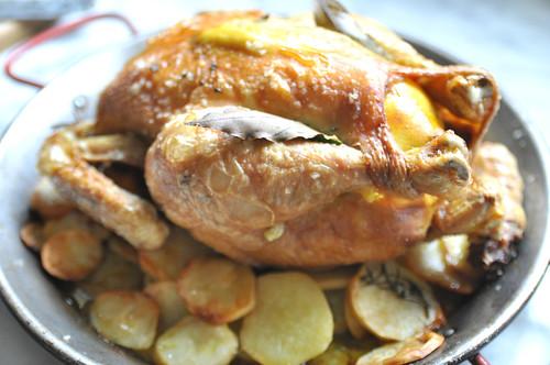 chicken licken5