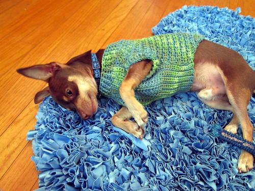 freddie's sweater