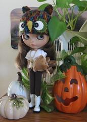 brishelles_pumpkins_4