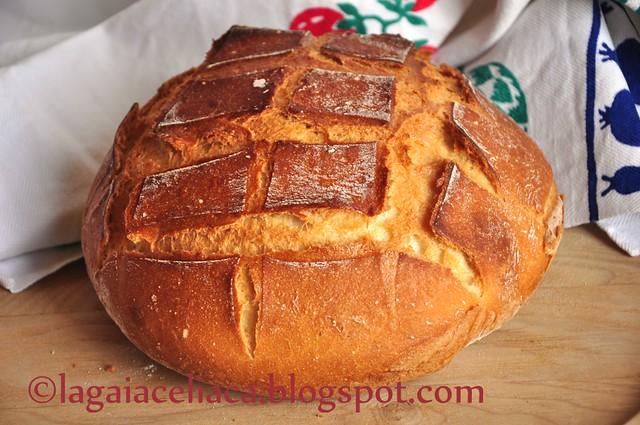 pane con lievito madre cotto nella pentola