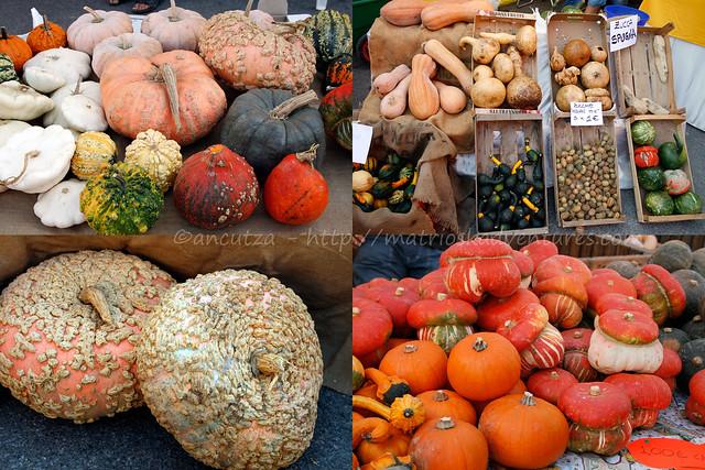 foto immagini con zucche colorate alla sagra della zucca piozzo